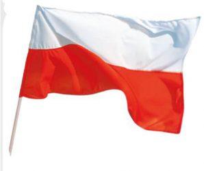 Flaga Polski bez godła